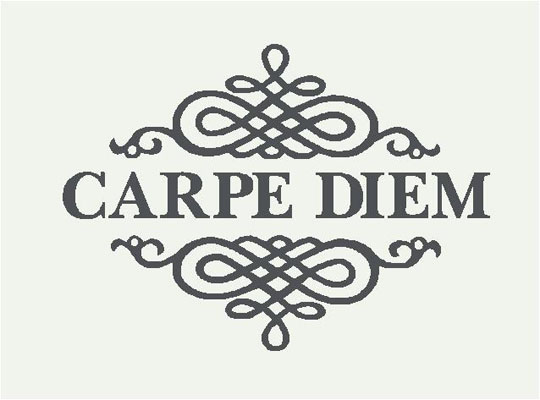 What does carpe diem mean to you