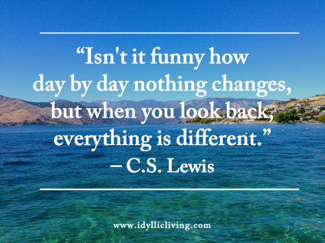 Everything Changes C.S. Lewis